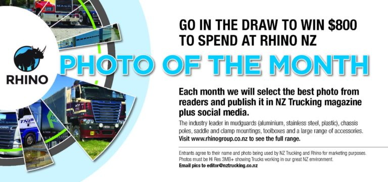 rhino photo of the month